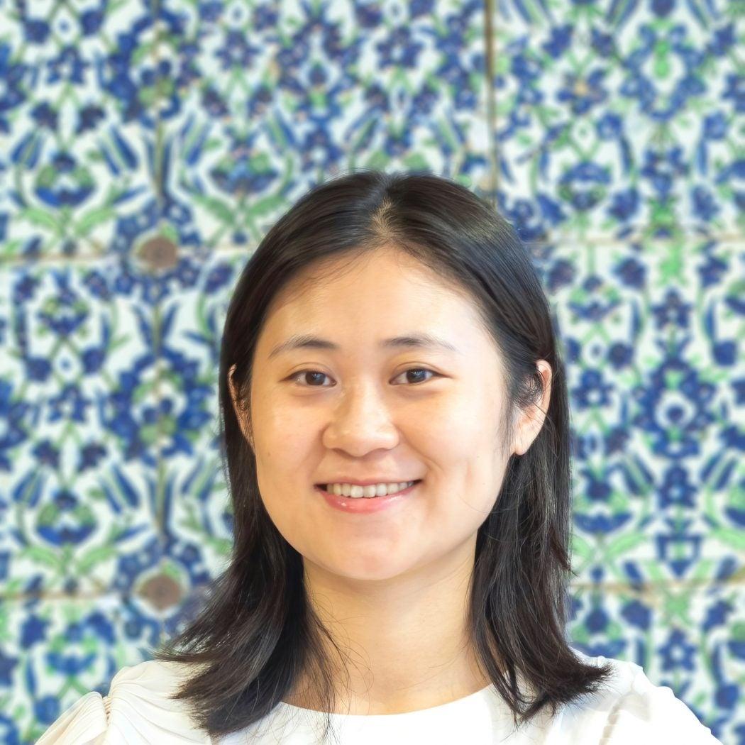 Nanlin Fang